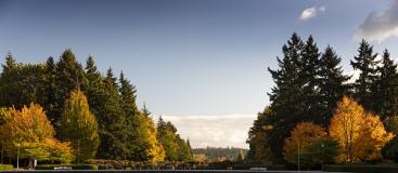 Fall Campus Scene, green and orange trees, blue sky, and white clouds